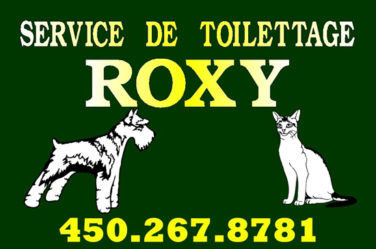 Toilettage ROXY
